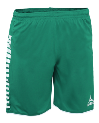 Argentina player shorts - zielony